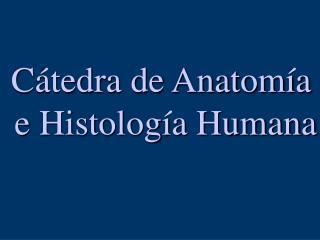C tedra de Anatom a  e Histolog a Humana
