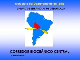 UNIDAD DE ESTRATEGIAS DE DESARROLLO