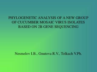 PHYLOGENETIC ANALYSIS OF A NEW GROUP OF CUCUMBER MOSAIC VIRUS ISOLATES BASED ON 2B GENE SEQUENCING