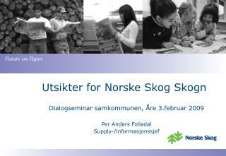 Utsikter for Norske Skog Skogn
