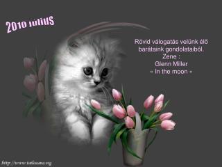 Rövid válogatás velünk élő barátaink gondolataiból . Zene  : Glenn Miller «In the moon»