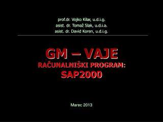 GM – VAJE RAČUNALNIŠKI PROGRAM:  SAP2000
