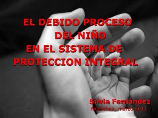 EL DEBIDO PROCESO      DEL NI O       EN EL SISTEMA DE   PROTECCION INTEGRAL              Silvia Fern ndez            Ne