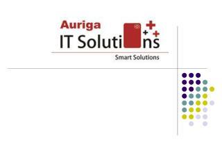 Auriga IT Solutions – Team Profile