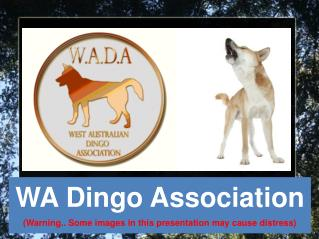 WA Dingo Association (Warning.. Some images in this presentation may cause distress)‏