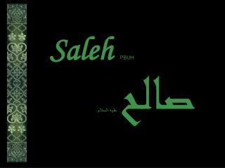 Saleh PBUH