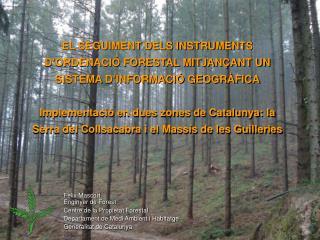 Fèlix Mascort  Enginyer de Forest Centre de la Propietat Forestal