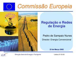 Regulação e Redes de Energia Pedro de Sampaio Nunes Director: Energia Convencional