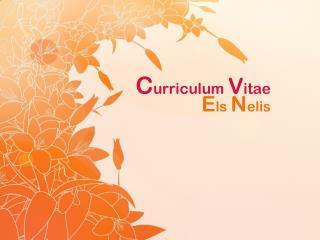 C urriculum  V itae