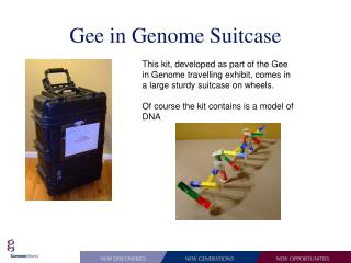 Gee in Genome Suitcase