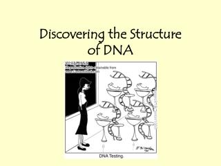 1. DNA Watson Crick,1953