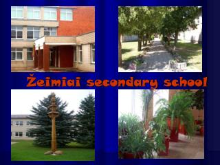Žeimiai secondary school