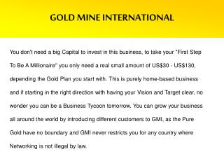 GOLD MINE INTERNATIONAL