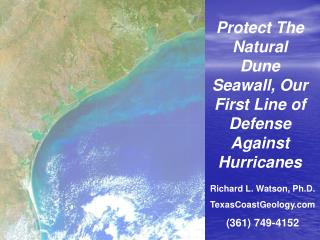 Protect The Natural Dune Seawall, Our First Line of Defense Against Hurricanes