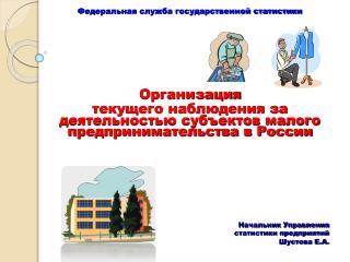 Федеральная служба государственной статистики  Организация