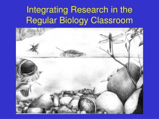 Integrating Research in the  Regular Biology Classroom