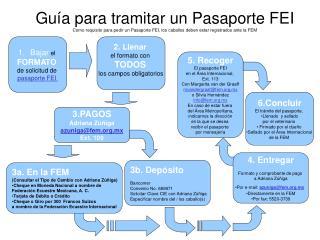 Bajar  el  FORMATO de solicitud de  pasaporte FEI