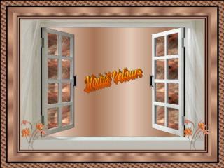 Moiti  Velours