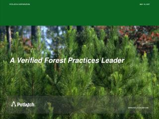 A Verified Forest Practices Leader