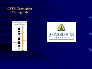 CFTR Genotyping  Cutting Lab
