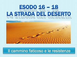 Esodo 16 � 18 La  strada del  deserto