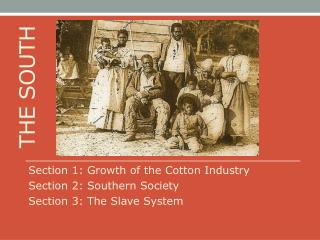 Section 1: Growth of the Cotton Industry Section 2: Southern Society Section 3: The Slave System