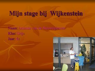 Mijn stage bij  Wijkenstein