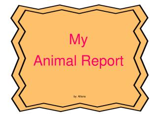 My  Animal Report