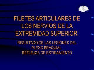 FILETES ARTICULARES DE LOS NERVIOS DE LA EXTREMIDAD SUPERIOR .