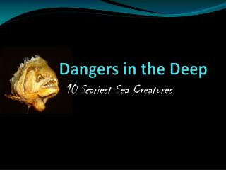 Dangers in the Deep