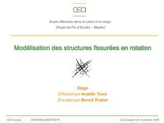 Modélisation des structures fissurées en rotation