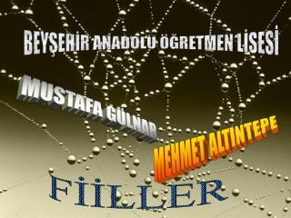 BEYŞEHİR ANADOLU ÖĞRETMEN LİSESİ