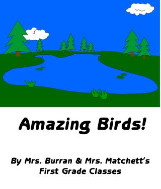 Amazing Birds! By Mrs. Burran & Mrs. Matchett's First Grade Classes