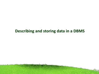 Describing and storing data in a DBMS