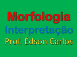 Morfologia Interpretação