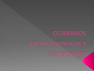 GOBIERNOS DEPARTAMENTALES Y MUNICIPALES