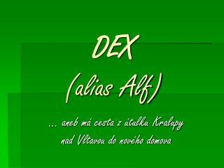 DEX  (alias Alf)