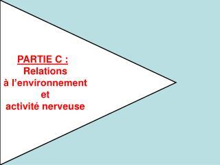 PARTIE C :   Relations    l environnement  et  activit  nerveuse