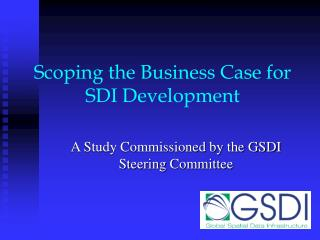 Scoping the Business Case for SDI Development