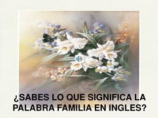 SABES LO QUE SIGNIFICA LA PALABRA FAMILIA EN INGLES
