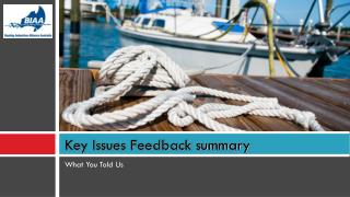 Key Issues Feedback summary