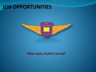 What types of pilot I can be?