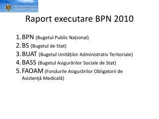 Raport executare BPN 2010