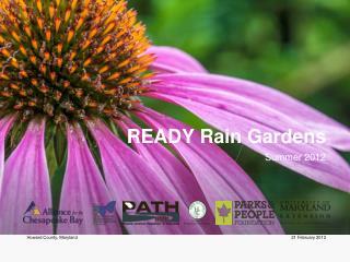 READY Rain Gardens