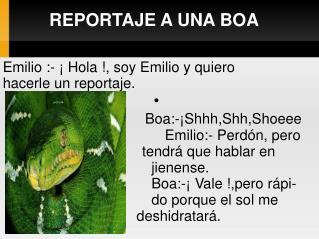 REPORTAJE A UNA BOA