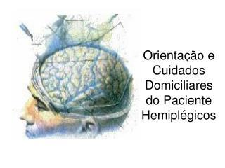 Orientação e Cuidados Domiciliares do Paciente Hemiplégicos