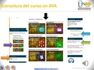 Estructura del curso en AVA