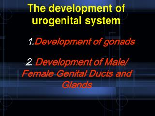 Development of gonads