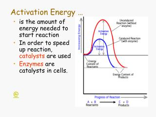 Activation Energy …