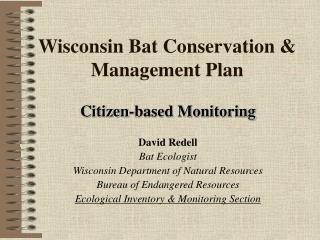Wisconsin Bat Conservation & Management Plan
